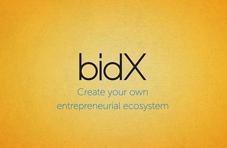 Met BidX worden ondernemers in ontwikkelingslanden in staat gesteld om via goede business- & financiële plannen aan coaching en investering te komen. Vervolgens biedt het BidX network mogelijkheden om lokaal en (inter)nationaal het juiste ondernemers eco-systeem te creëren.